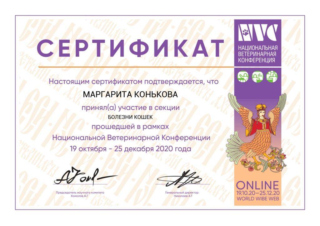 konkova-sertif1