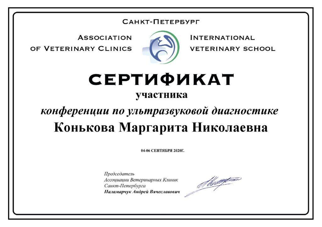Сертификат участника конференции Конькова М. Н.
