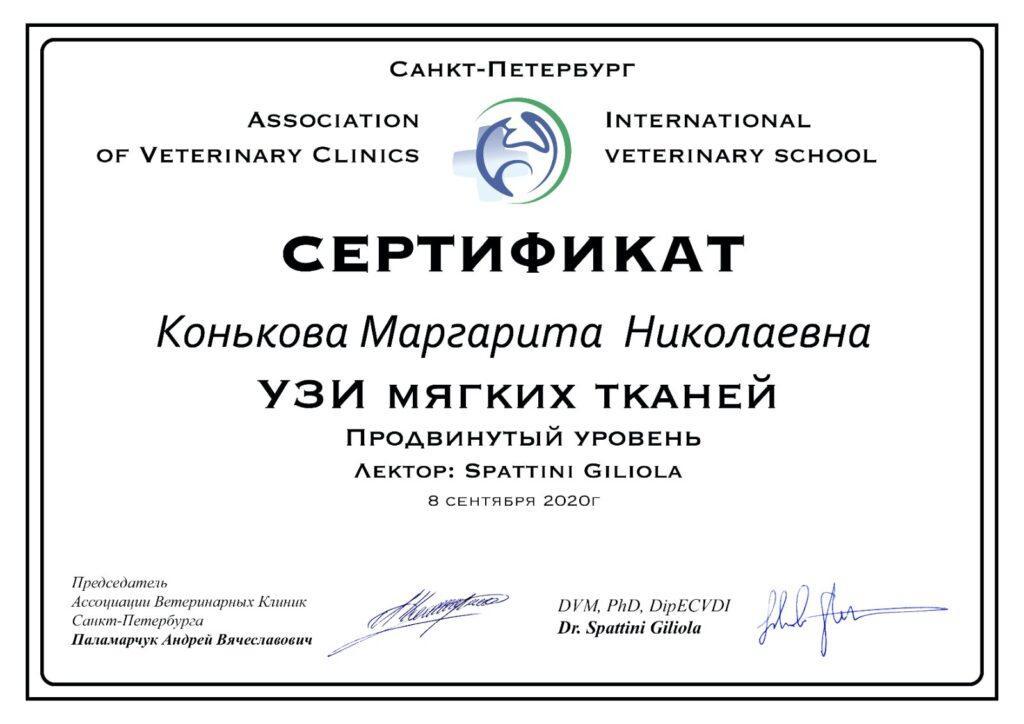 Сертификат УЗИ Конькова М. Н.