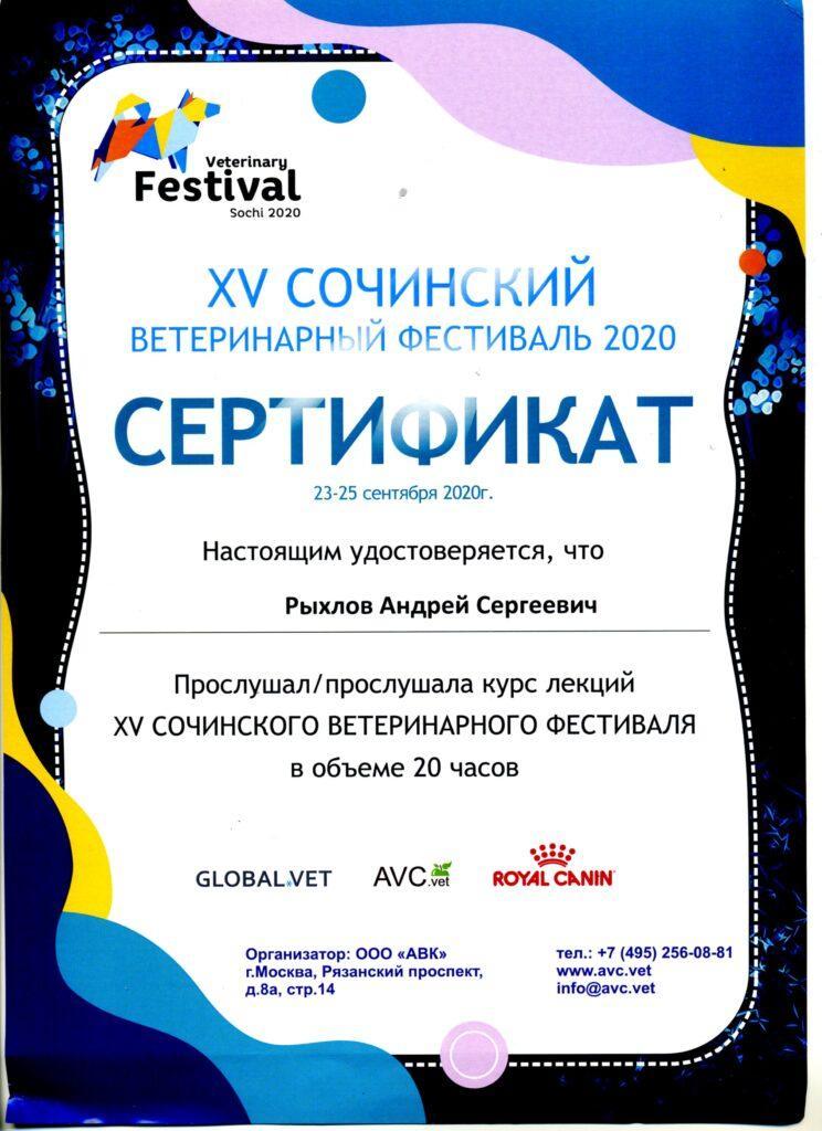 Сертификат Рыхлов А. С.