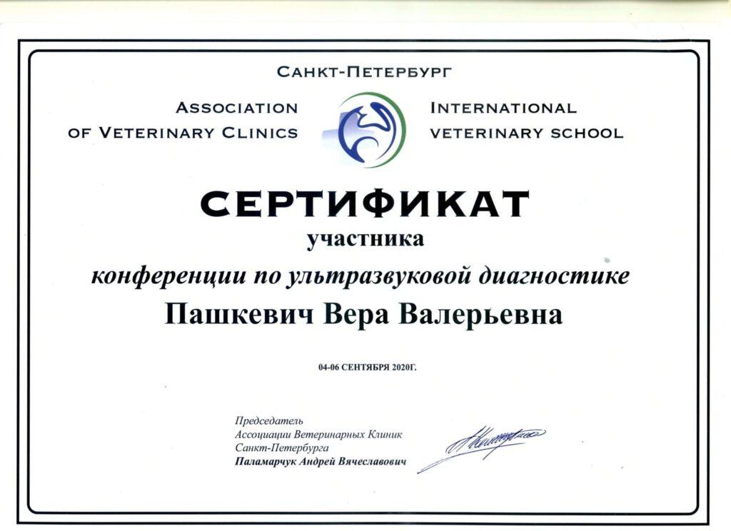 Сертификат УЗИ Пашкевич В. В.